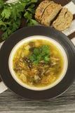 Mushroom soup in ceramic  bowl Stock Image