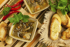 Mushroom soup in ceramic  bowls Stock Images