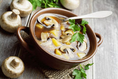 Mushroom soup with champignons Royalty Free Stock Photo