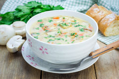 Mushroom soup with chicken. Homemade mushroom soup with chicken Stock Images