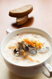 Mushroom soup with cream Stock Photography