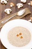Mushroom soup with croutons Stock Photography
