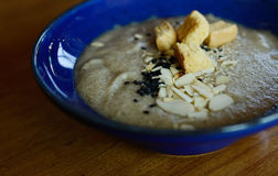 Mushroom soup. Delicious soup puree with wild mushrooms stock photo