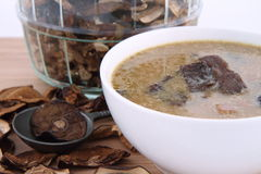 Mushroom soup and dried mushrooms Stock Image