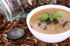 Mushroom soup and dried mushrooms Royalty Free Stock Photography