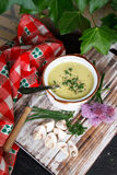 Mushroom soup. A fresh bowl of mushroom soup Royalty Free Stock Images