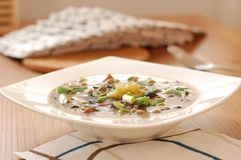 Mushroom soup with garlic and onion Royalty Free Stock Images