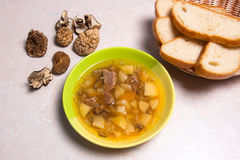 Mushroom soup in green plate, dried wild mushrooms and white bre Stock Photography