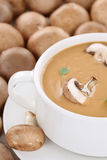 Mushroom soup with many fresh mushrooms in bowl Royalty Free Stock Image