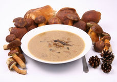 Mushroom soup and mushrooms Royalty Free Stock Image