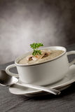Mushroom Soup with parsley Stock Image