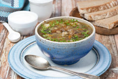 Mushroom soup with pearl barley Stock Images
