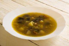 Of mushroom soup stock photos