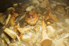 Mushroom soup with potatoes and chanterelle Stock Images