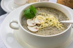 Mushroom soup puree. royalty free stock image