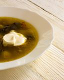 Of mushroom soup stock images