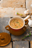 Mushroom soup stew Stock Images