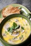 Mushroom Soup with Toast. Over dark slate stock photos