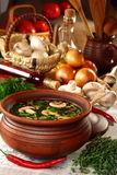 Mushroom soup in village style. Stock Photography