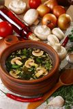 Mushroom soup in village style. Stock Images