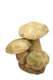 Mushroom Statue. Isolated on white Stock Image