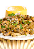 Mushroom stew Royalty Free Stock Photography