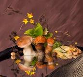 Mushroom still life Stock Photo