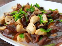 Mushroom stir fry. A freshly cooked mushroom stir fry served in a white dish Royalty Free Stock Images