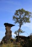 Mushroom stone Stock Photo