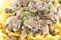 Mushroom Stroganoff Royalty Free Stock Photography