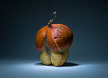 Mushroom style pumpkin Stock Photo