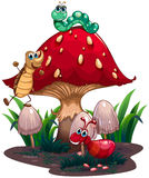 A mushroom surrounded with different insects Vector Illustration