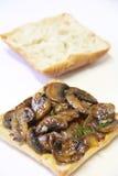 Mushroom Swiss Panini Sandwich. Shot of a vegetarian Mushroom Swiss Panini Sandwich Stock Photography