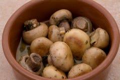 Mushroom tapas macro Stock Photos