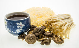 Mushroom tea and assortment of mushrooms. Stock Images
