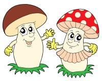 Mushroom and toadstool vector illustration. Mushroom and toadstool - vector illustration Stock Images