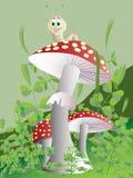 Mushroom. Vector. Stock Photo