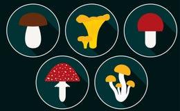 Mushroom vector set. Mushroom set with flat design. Vector Illustration royalty free illustration