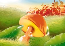 Mushroom & water drops Royalty Free Stock Image