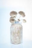 Mushroom. On white background Royalty Free Stock Photo