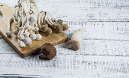 Mushroom on the white wood Royalty Free Stock Photography