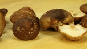Mushroom on a wooden board. Close-up stock footage