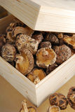 Mushroom Wooden box Royalty Free Stock Photography