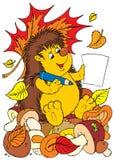 Mushroomer do Hedgehog Imagens de Stock