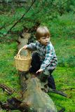 Mushrooming. Little boy with basket crossing the log Royalty Free Stock Photos