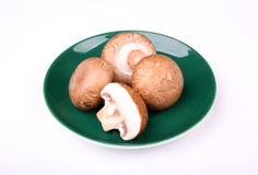 Mushrooms Royalty Free Stock Photo