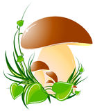 Mushrooms. Big mushroom on green grass. vector illustration Royalty Free Stock Photo