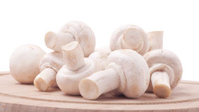 Mushrooms. A pile of fresh and aromatic mushrooms on a wooden board royalty free stock image