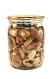 Mushrooms. Marinated mushrooms isolated on white Royalty Free Stock Image