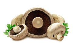 Mushrooms royalty free stock image